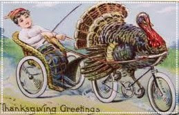 turkey bike
